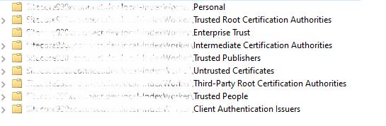 screenshot20-20sitecore20certificates20-20certificate20paths-1